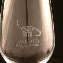 Saurus Glas